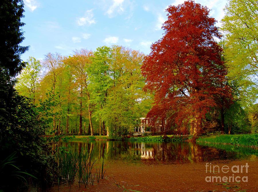 Hawthorn pond by Luc Van de Steeg