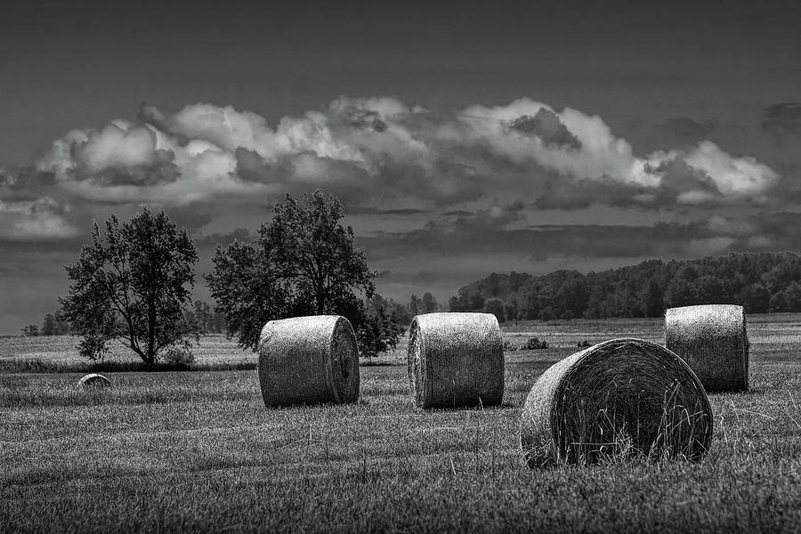 Hay Bales on a Harvest Farm Field in West Michigan in Black and  by Randall Nyhof