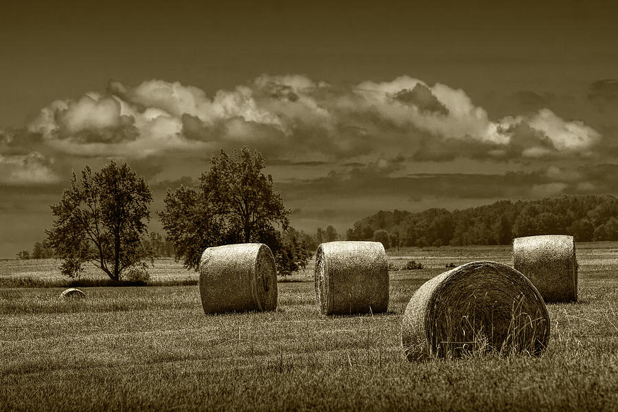 Hay Bales on a Harvest Farm Field in West Michigan in Sepia Tone by Randall Nyhof