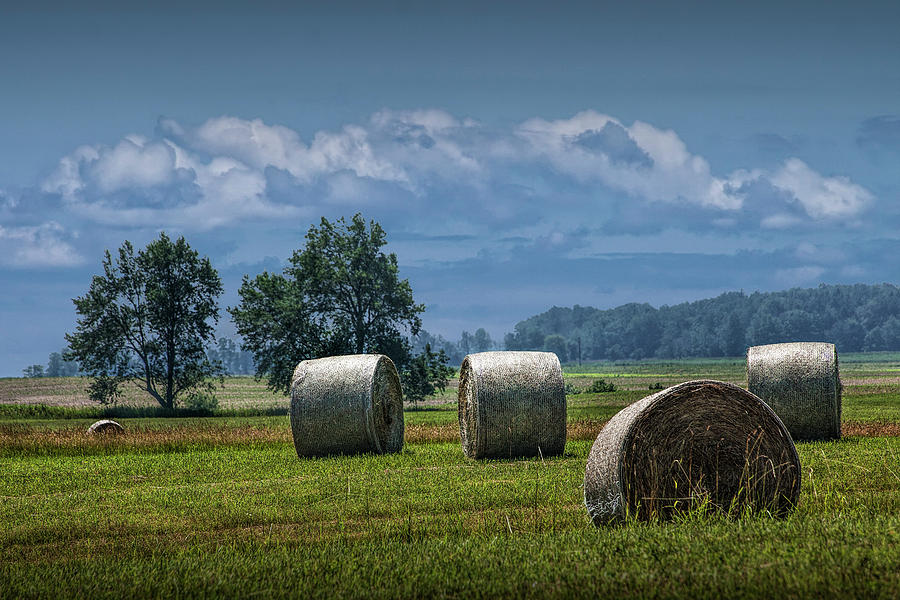 Hay Bales on a Harvest Farm Field in West Michigan by Randall Nyhof