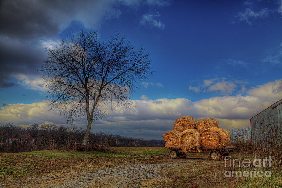 2014 Photograph - Hay Bales On A Wagon by Larry Braun