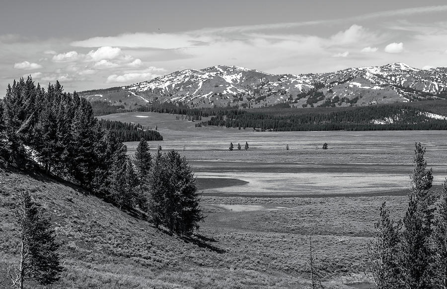 Hayden Valley Landscape Black And White by Dan Sproul