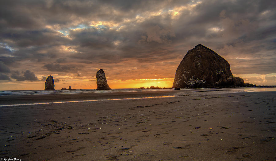 Haystack and the Needles by Gaylon Yancy