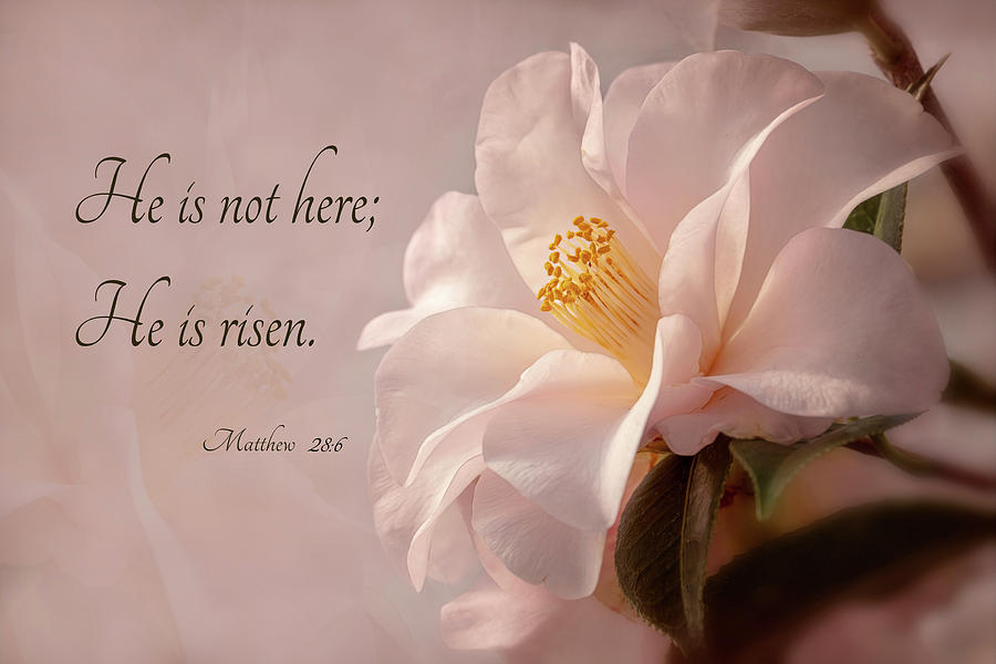 He Is Risen by Mary Jo Allen