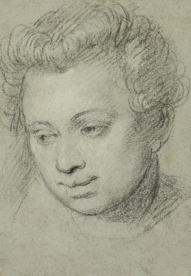 Italian Painters Drawing - Head Of A Woman by Paolo Veronese