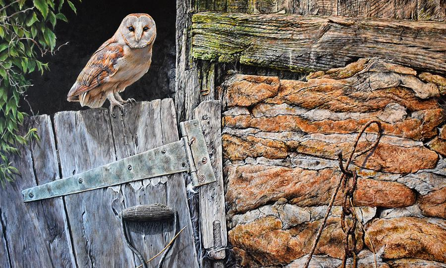 Heading Out For Dinner - Barn Owl By Alan M Hunt Painting