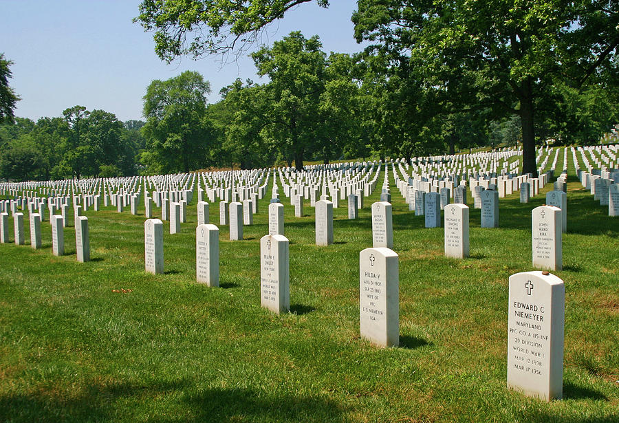 Headstones At Arlington by Anthony Jones