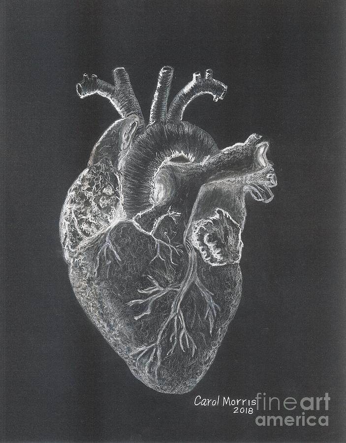 HEART by Carol Morris