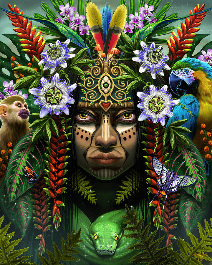 Heart of the Amazon by Cristina McAllister