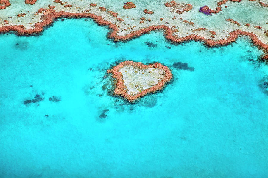 Heart Reef Photograph by Aaron Foster