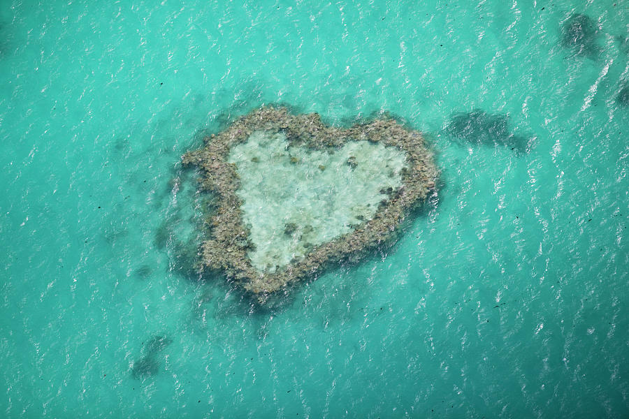 Heart Reef, Great Barrier Reef Photograph by Gallo Images