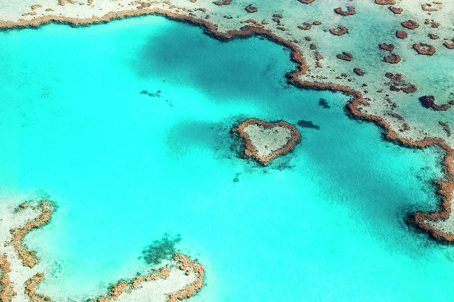 Heart Reef In The Great Barrier Reef Photograph by Australian Scenics