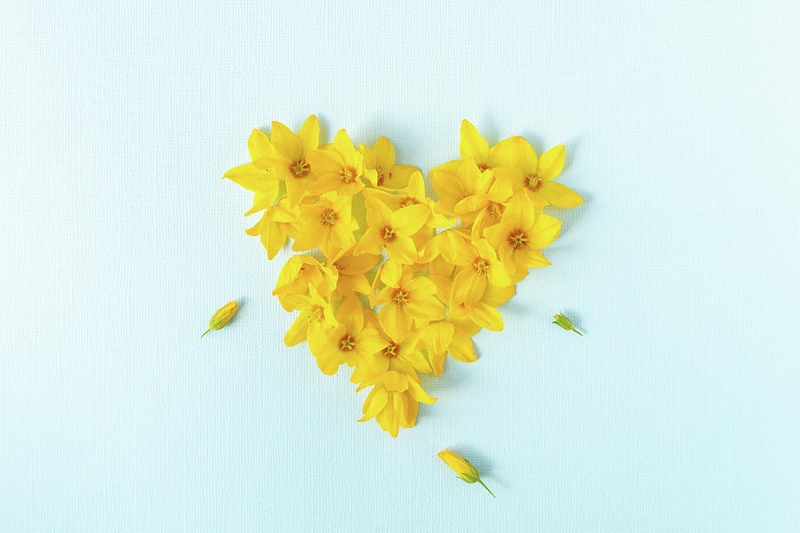 Heart shaped with yellow flowers  by Edita Edith Anna Brus
