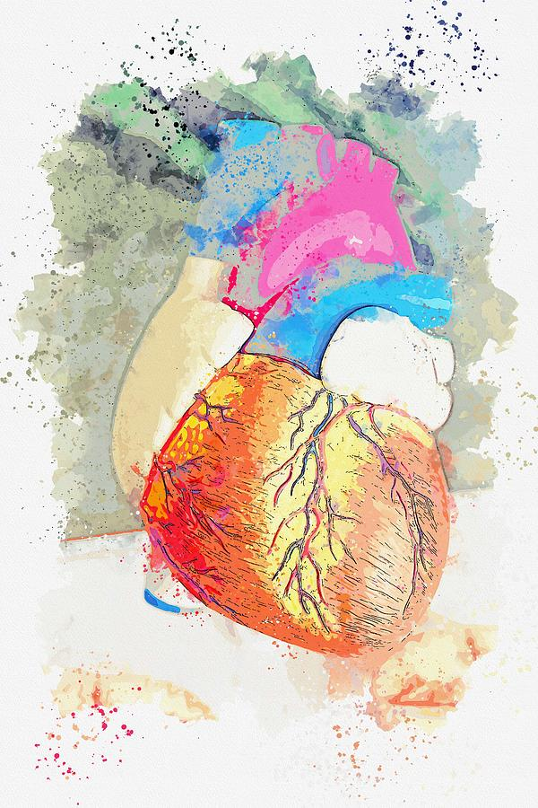 heart -  watercolor by Adam Asar by Adam Asar