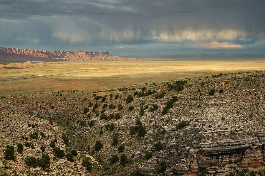 Heavenly Rain by Leda Robertson