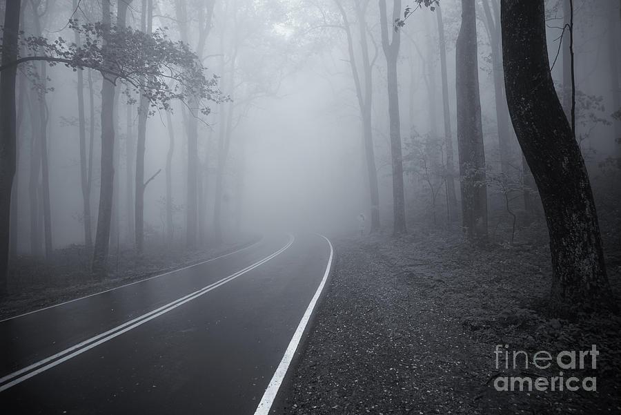 Heavy Fog Ahead Mono 2 by Rachel Cohen