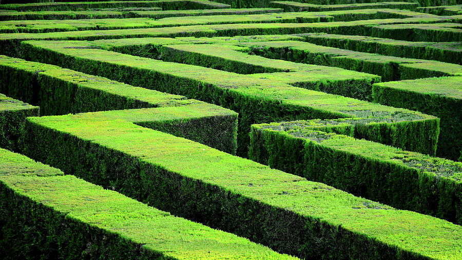 Hedge Maze In Barcelona Laberint Dhorta Photograph by Marcel Germain