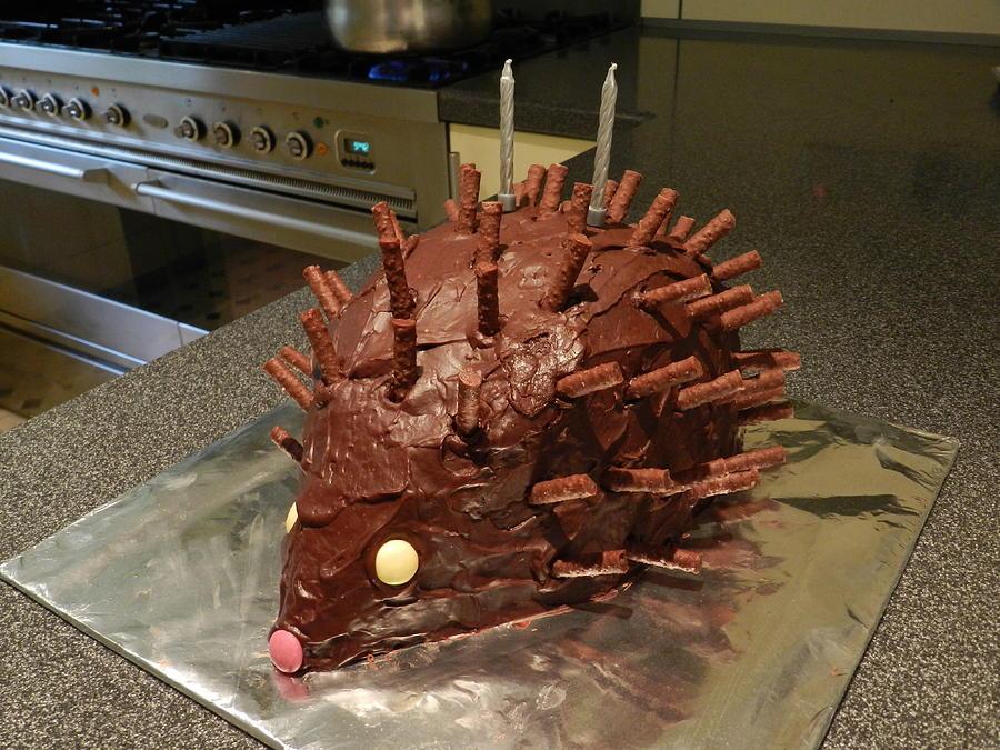 Amazing Hedgehog Birthday Cake Photograph By Lynne Iddon Funny Birthday Cards Online Inifodamsfinfo
