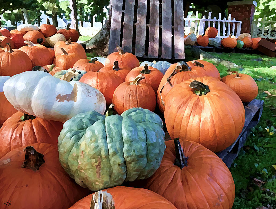 Heirloom Pumpkins by Tom Johnson
