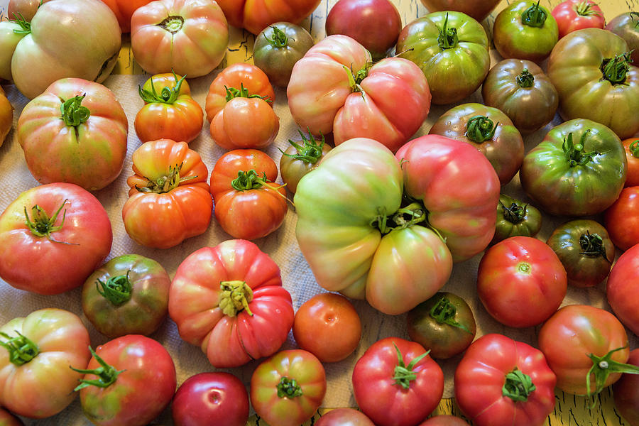Heirloom Tomatoes by Fran Gallogly
