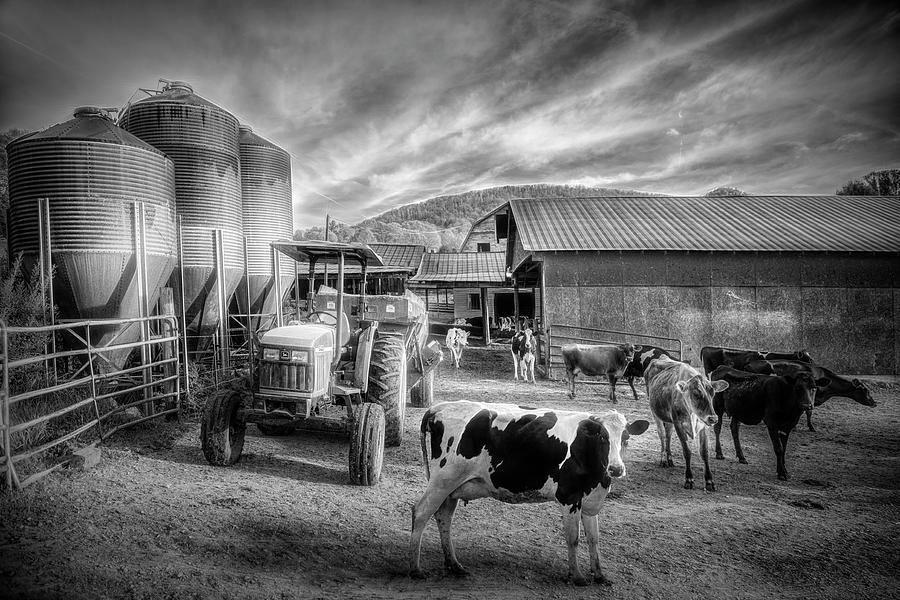 Hello Girls in Black and White by Debra and Dave Vanderlaan