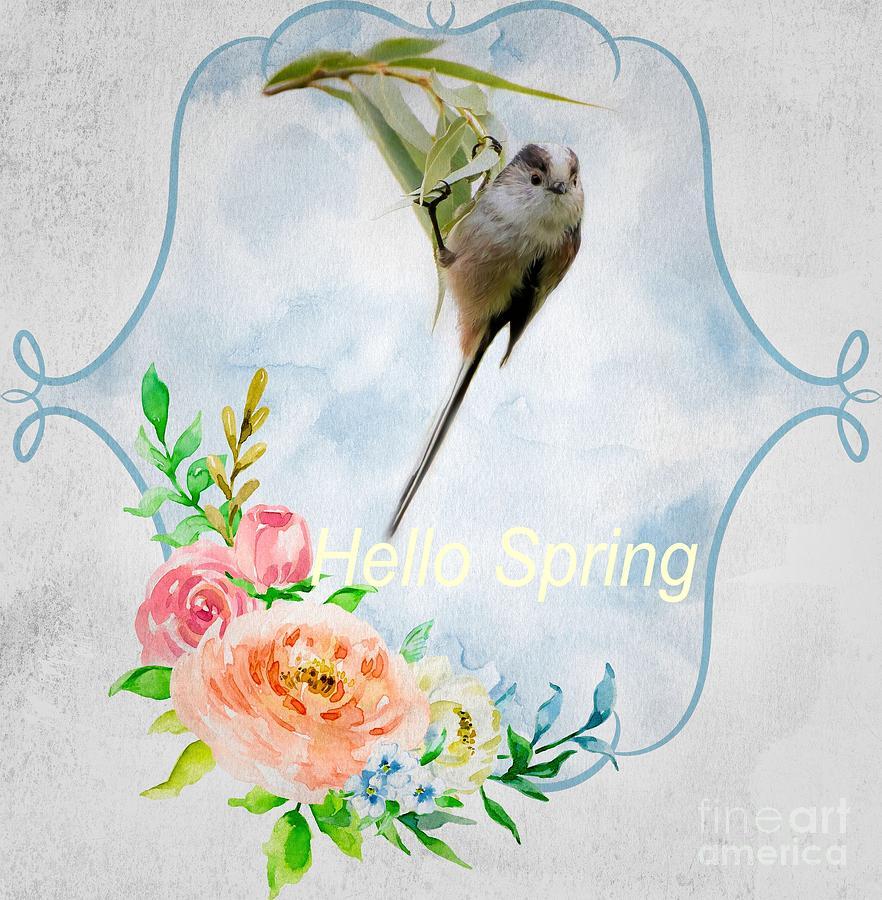 Hello Spring by Eva Lechner