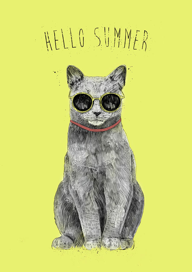 Cat Drawing - Hello Summer  by Balazs Solti