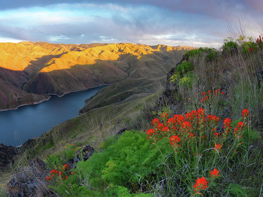 Altitude Photograph - Hells Canyon View by Leland D Howard