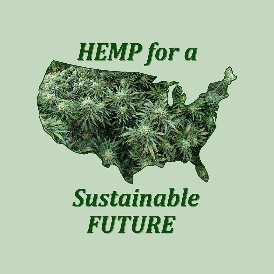 Hemp for a Sustainable Future by Julia L Wright