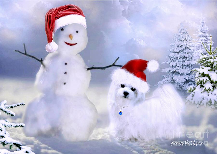 Hermes and Snowman by Morag Bates