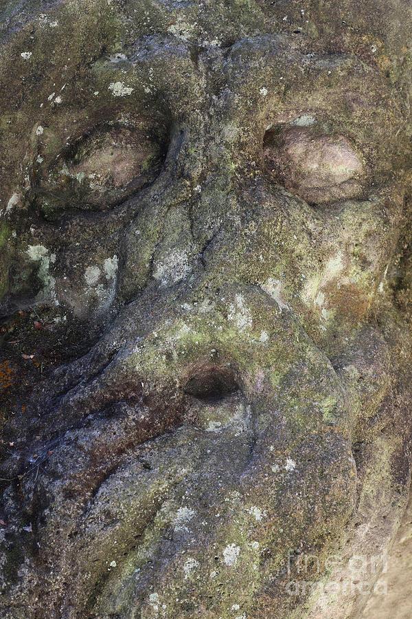 Hermit Juan Garin - detail of face by Michal Boubin
