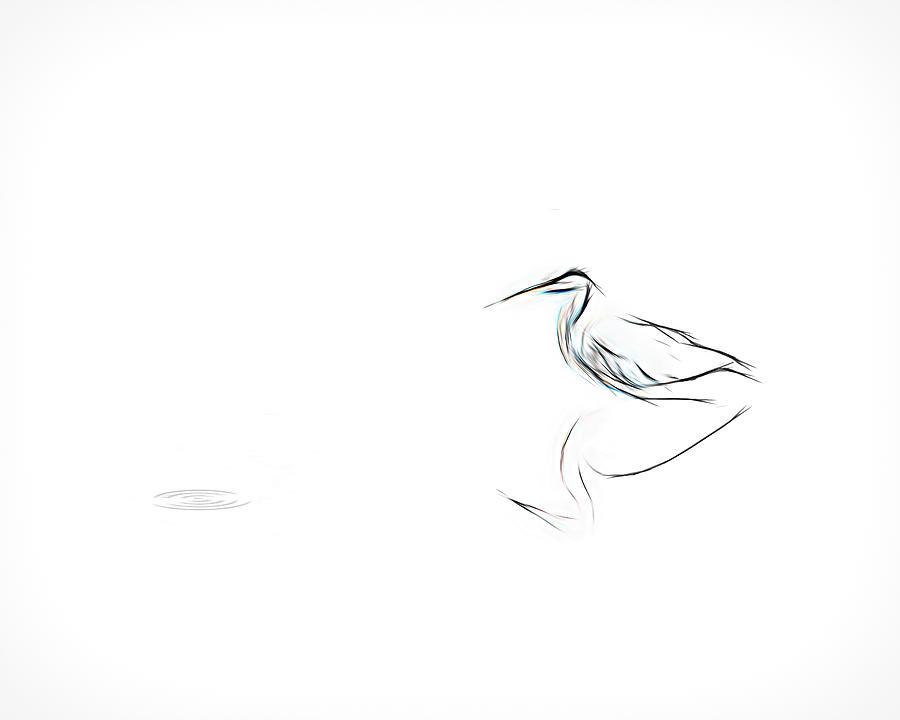 heron simple sketch by Bill Posner