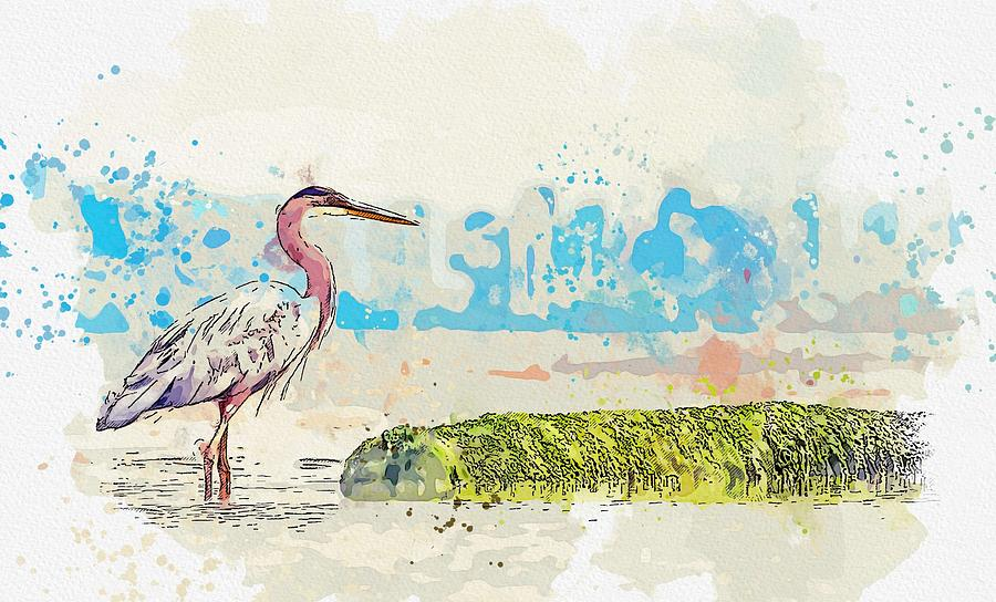 Heron -  watercolor by Adam Asar by Adam Asar