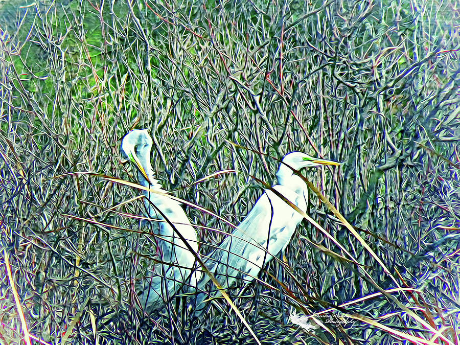Herons On Their Nest by Denise Winship