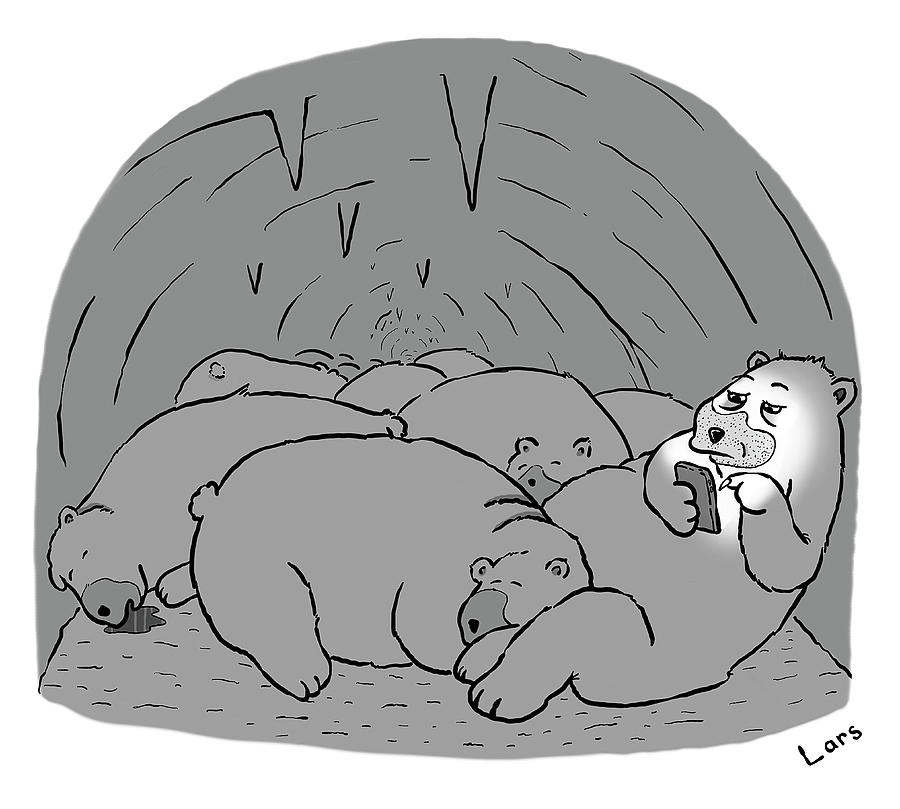 Hibernation Drawing by Lars Kenseth