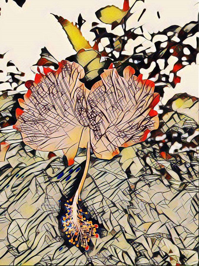 Hibiscus Flower Cartoon Drawing By Satyajit Sahu