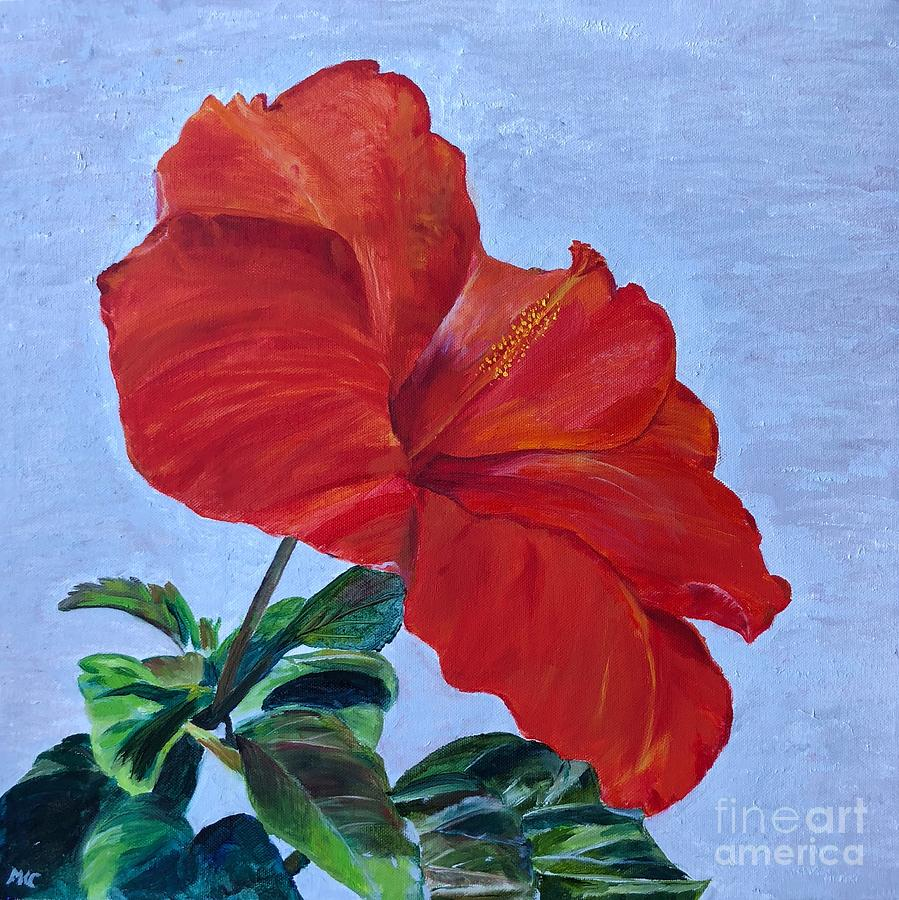 Hibiscus by MKC