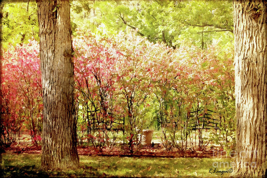 Hidden Benches by Rebecca Langen