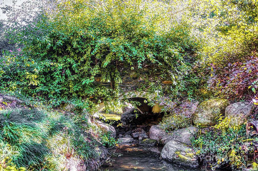 Bridge Photograph - Hidden Bridge by James Foshee