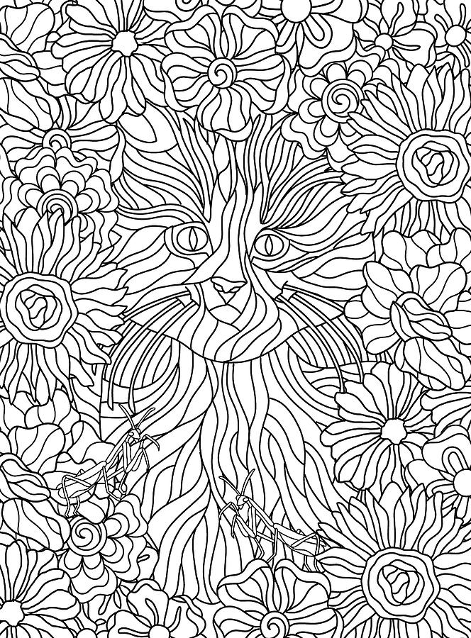 Coloring Books Drawing - Hidden Images Book A - 27 by Kathy G. Ahrens