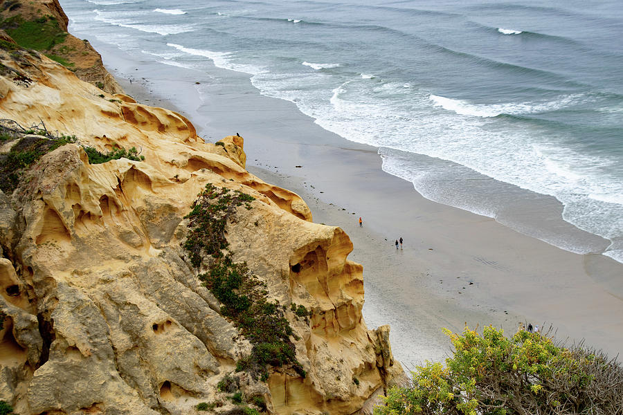 Active Photograph - High Above The Beach At Torrey Pines by Gloria Moeller