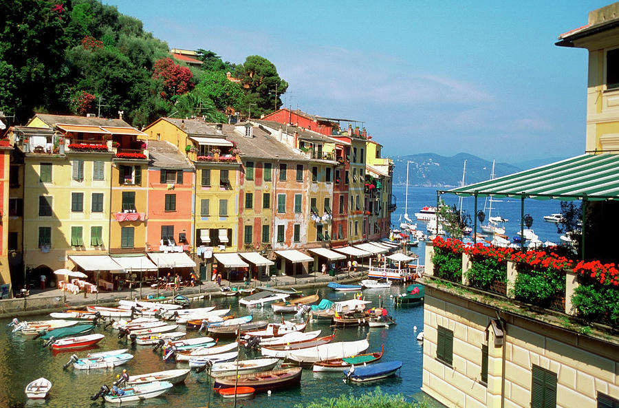 High Angle View Of A Harbor, Portofino Photograph by Medioimages/photodisc