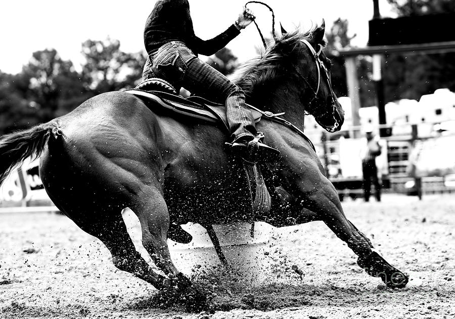 Compete Photograph - High Contrast, Black And White Closeup by Lincoln Rogers