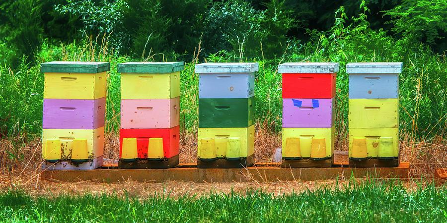 High Density Bee Housing by Gary Slawsky