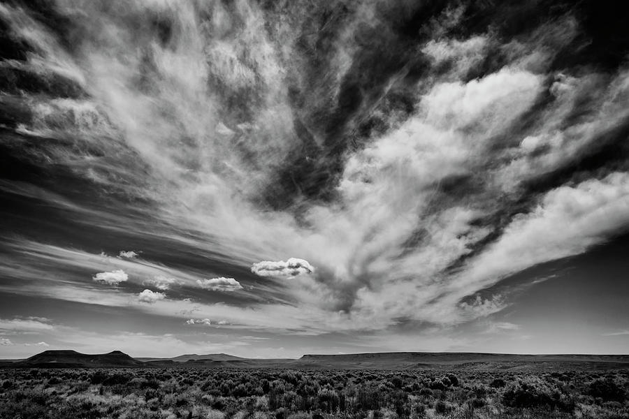 High Desert Drama by Steven Clark