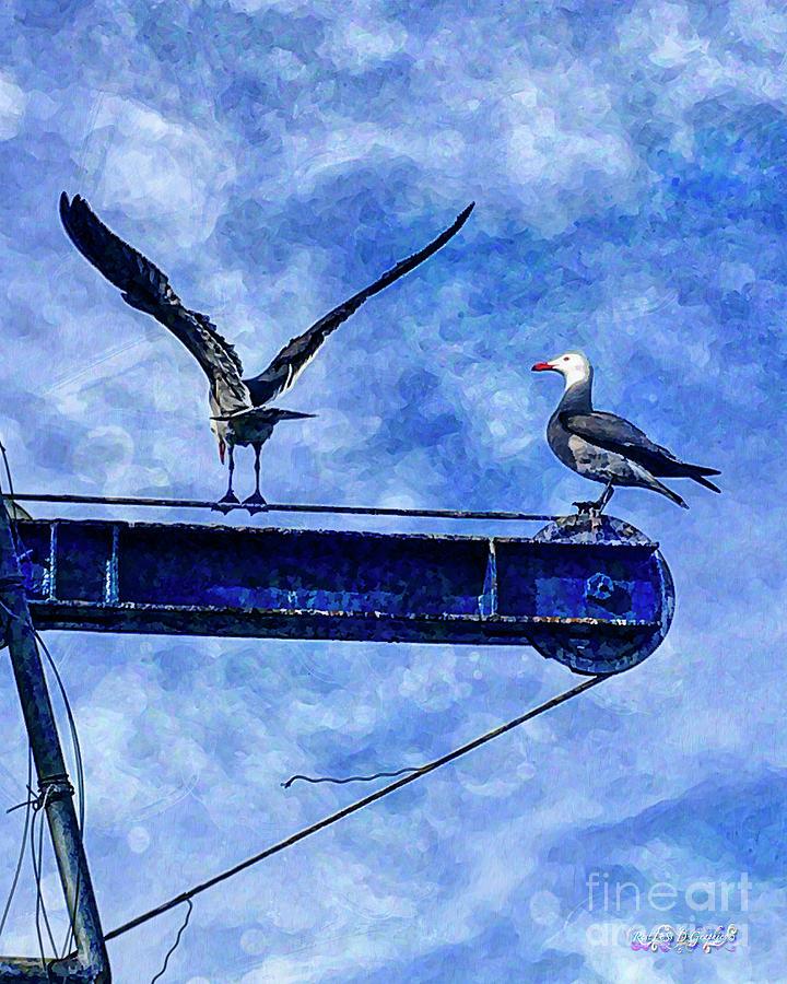 High Diving Gulls by Rhonda Strickland
