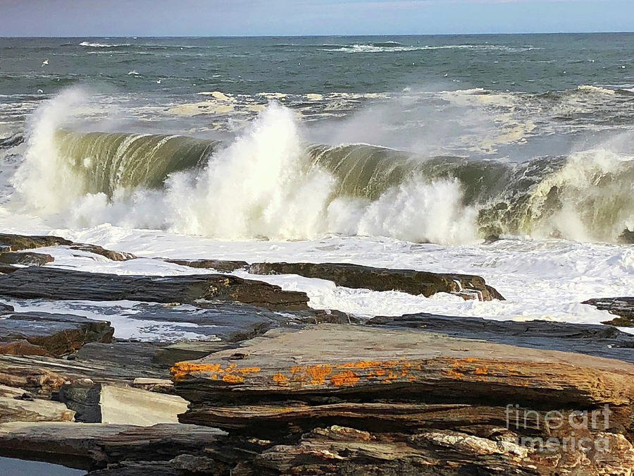 High Surf Warning by Jeanette French