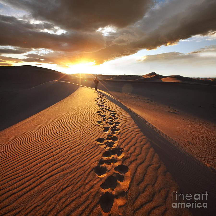 Namib Photograph - Hike In Namib Desert by Galyna Andrushko