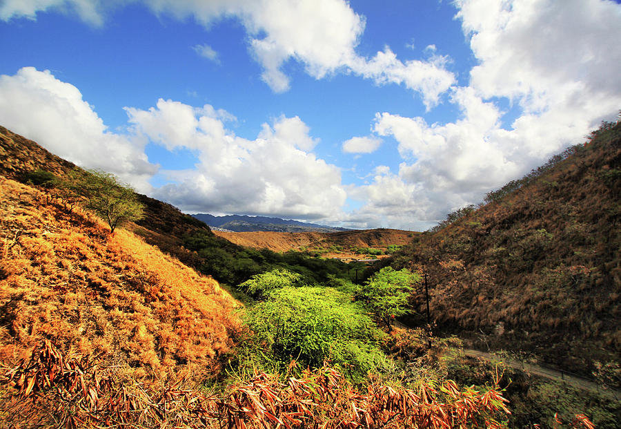 Hiking Diamond Head Photograph by L. Toshio Kishiyama