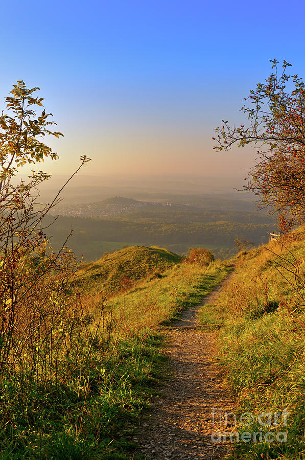 Hiking trail in the hills, bathed in golden autumn colors. by Ulrich Wende